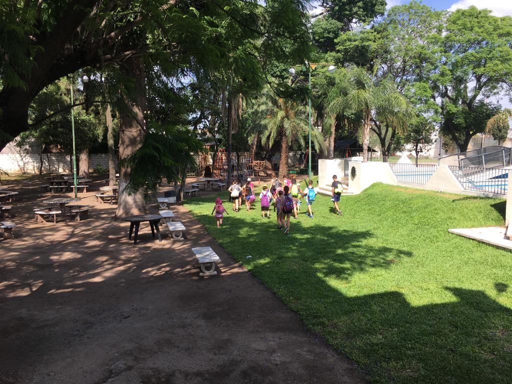 parque con pasto